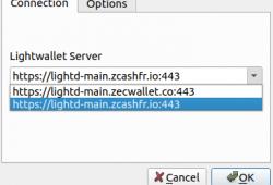 ZecWallet Lite server FR